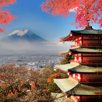 Highlights of Japan with Princess Cruise Escorted Tour